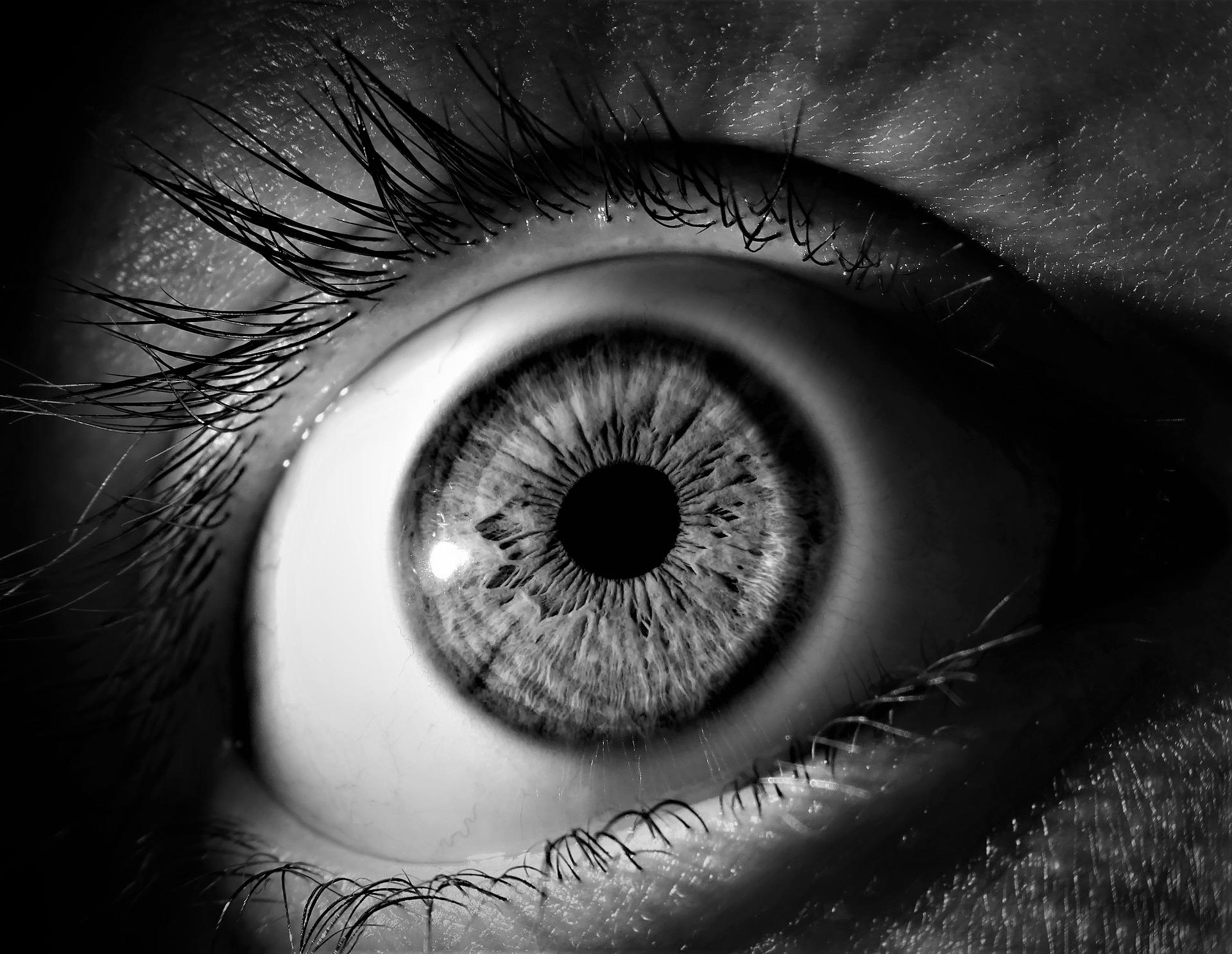 szem látó tekintet