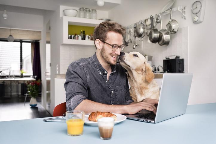 Hét dolog, amit mindenkinek érdemes tudnia, aki otthonról dolgozik