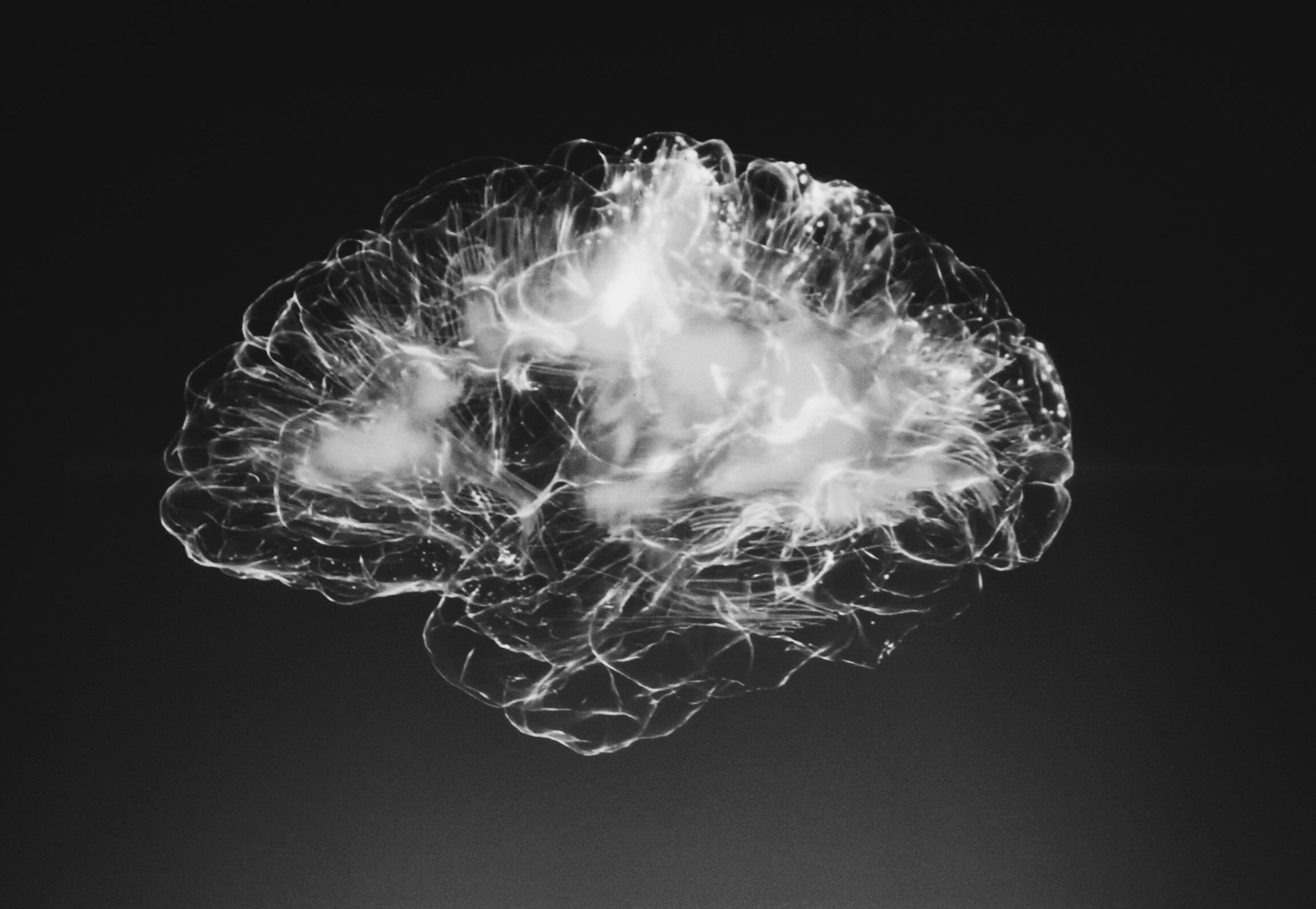 Reményt adhat a kábítószerfüggőknek az egerek bevilágított agyán végzett kísérlet